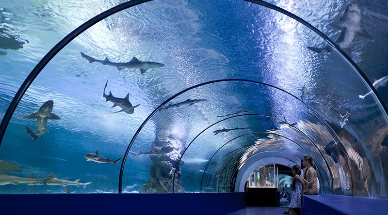 Antalya Aquarium tunnel