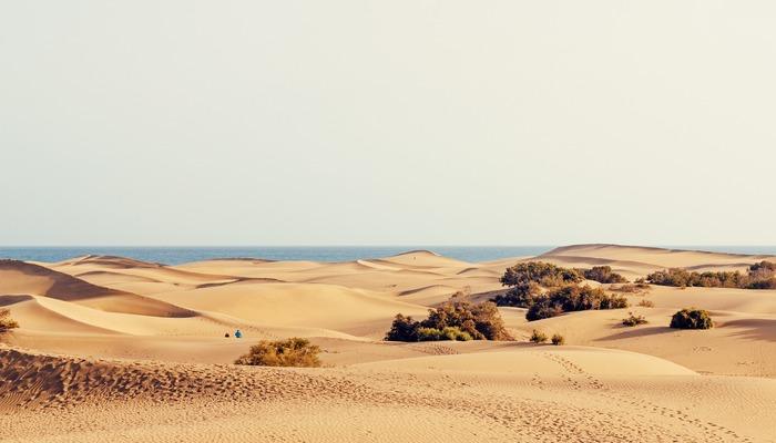 Maspolomas Dunes