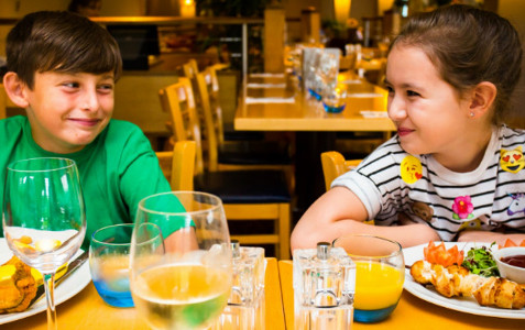 Alton Towers Nearby Partner Hotels - Holiday Inn Stoke On Trent