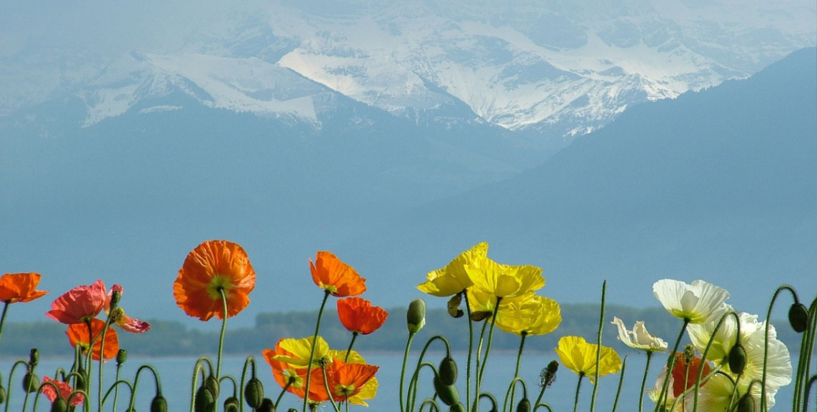 Geneva mountains